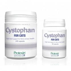 Cystophan 30 tabletek