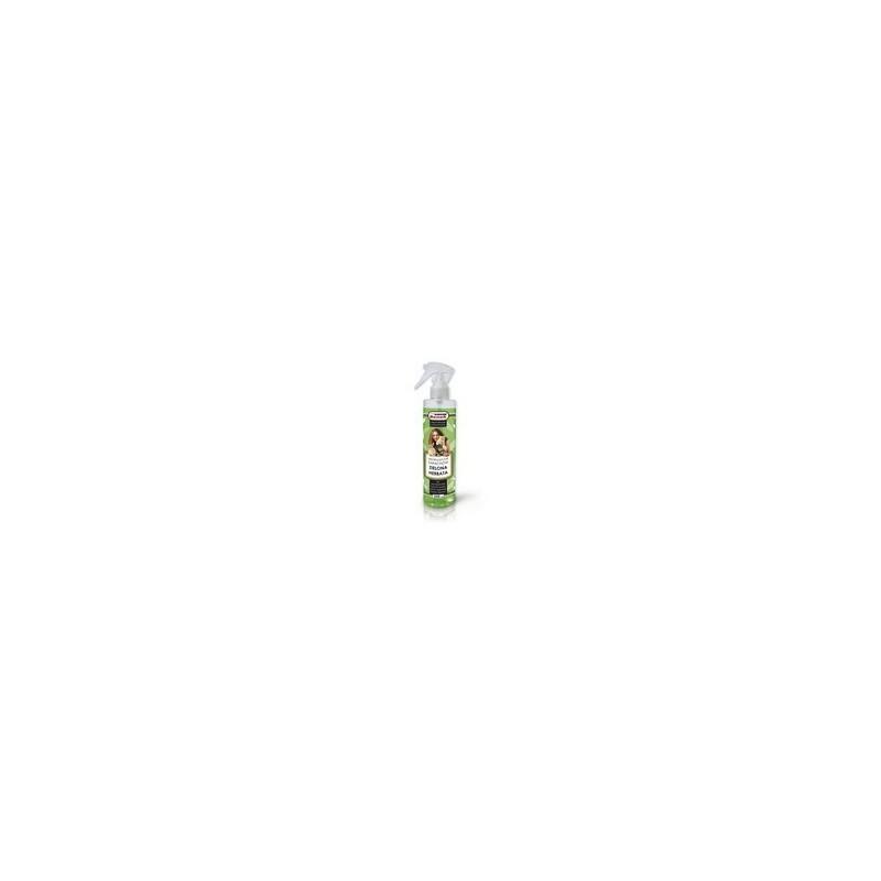 Neutralizator zapachu zielona herbata